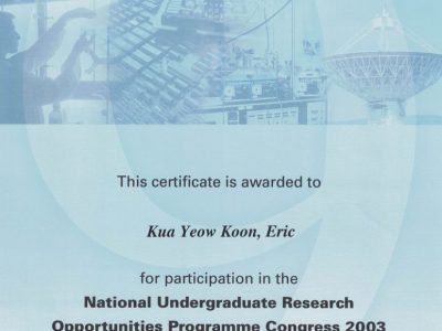 Eric Kua Undergraduate Research Opportunities Programme